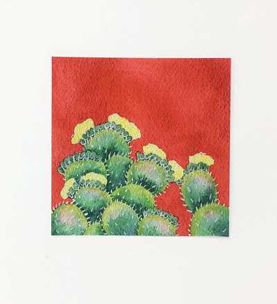 LonePineArt - Red -Flowering -Prickly Pear -Cactus -Painting- prints -Wine Country, Wine, Shop Local - Wine Country, Viansa Vineyard, Red Wine, White Wine, Rose, Vineyard, North Bay California Wines, Viansa