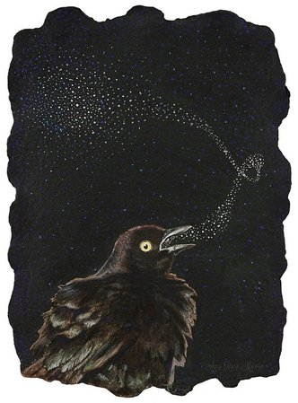 Halloween - bird - raven - crow - Black Bird -Singing -Illustration - Amy Rose Moore