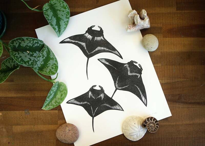 mantaray, prints, fish, sea life, SFEtsy, #Inktober, #InktoberSFetsy , Instagram